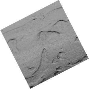 FIESTA STONE KOTE - South Coast Foam Shapes